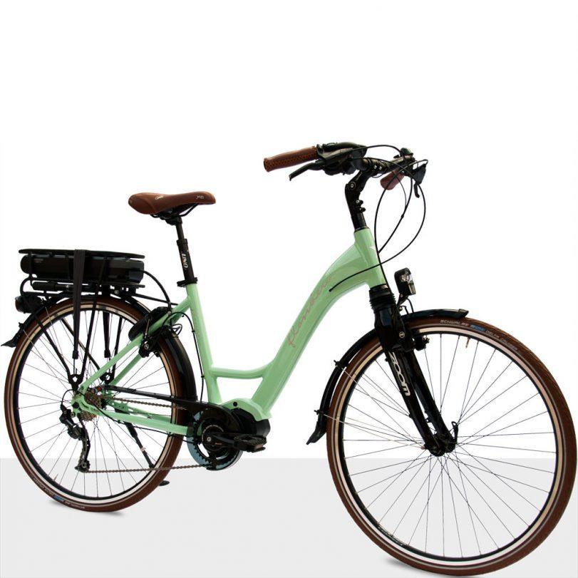 Flanders_e-bike-STePS_Strada