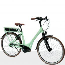 Flanders_e-bike-STePS_Comfort