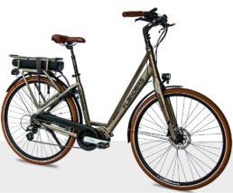 Flanders e-bike Cruiser Premium